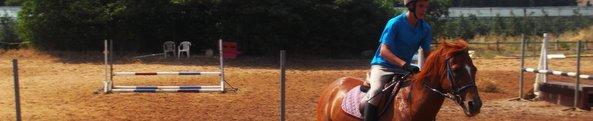 Stage équitation