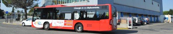 Réseau de bus Envia
